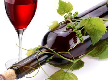 вино праздник