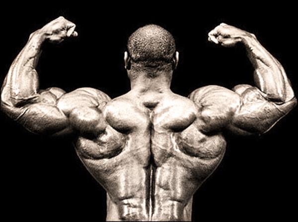 Хорошие упражнения для спины