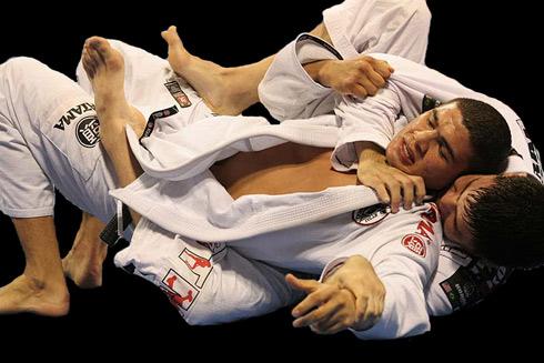 Система Грэйси - бразильский стиль дзю-дзюцу