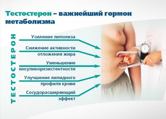 Калина при раке молочной железы