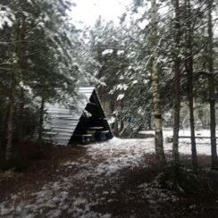 Влада Бахова нашли мертвым: останки и кроссовки в лесу
